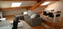 Exposed beams/charming living space - Aubonne