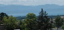 View lake (without crane)